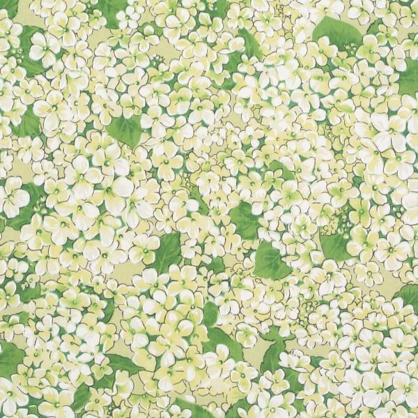 Flower Fairies Apple Blossom Blüten