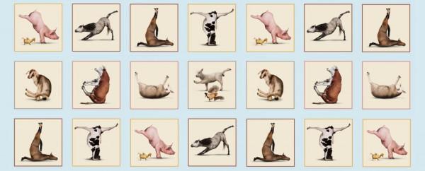 Yoga Tiere Sport Panel