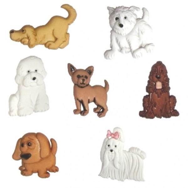 Knöpfe Hund Hunde Puppies