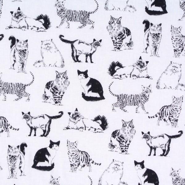 Patchworkstoff Katzenstoff gezeichnete Katzen Sketched Cats