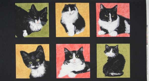 SALE Tuxedo Cats Katzen Panel