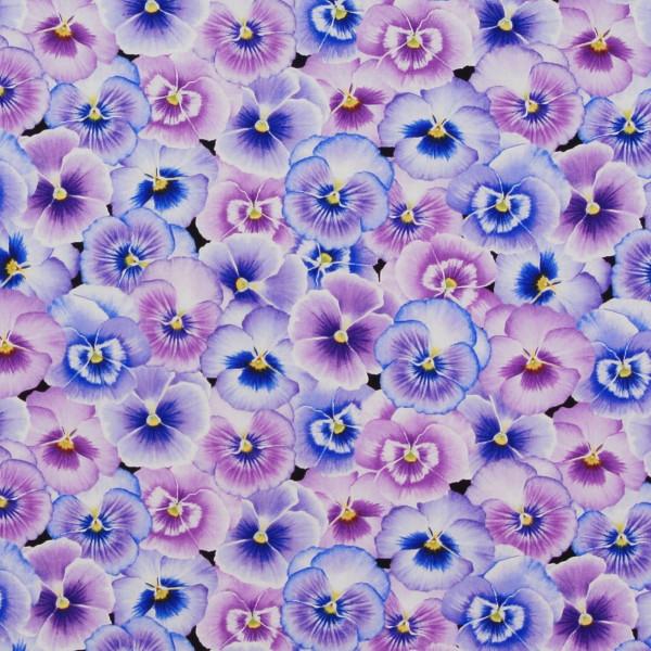 Stiefmütterchen Pretty Pansy Blüten •