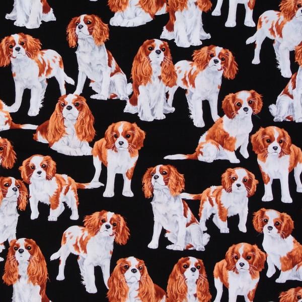 Patchworkstoff Rassehunde Hunde Cavalier