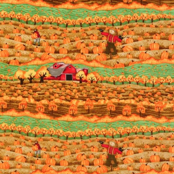 Landleben Herbst Kürbisse Harvest
