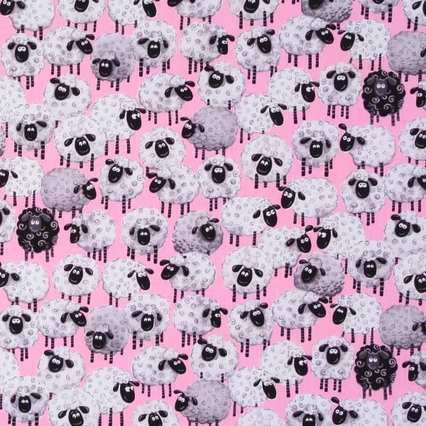 Susybee witzige Schafe auf Rosa •