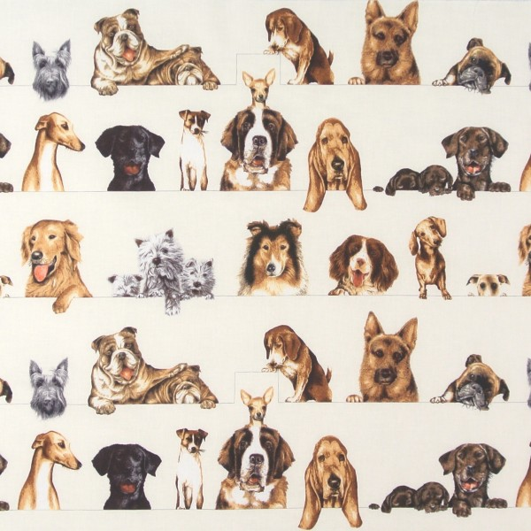 Sale Hunde Curious Canines Einzelstück •