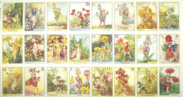 Flower Fairies Elfen Alphabet Fairies Panel