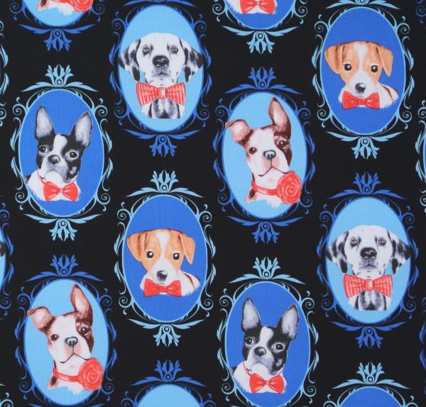 Timeless kleine Hunde Portraits