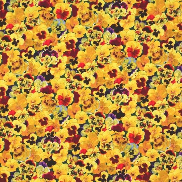 StiefmütterchenGarten Lovely Pansies Blumen gelb