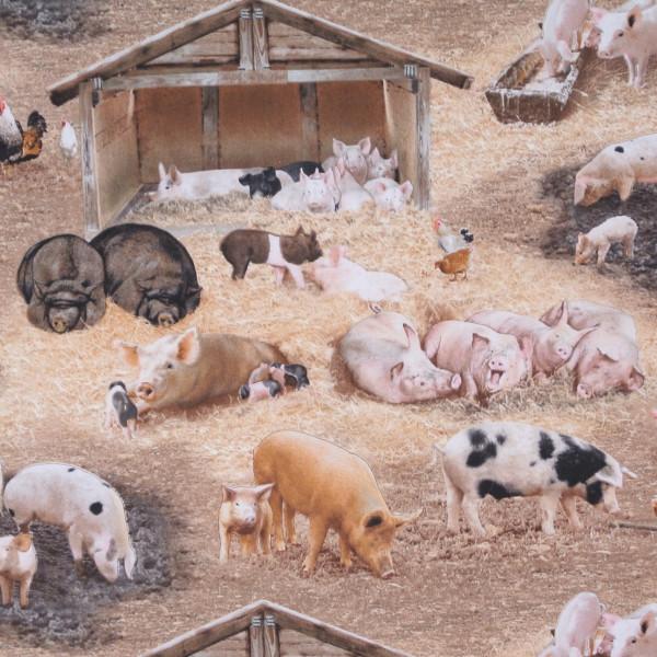 Farm Animals Schweine