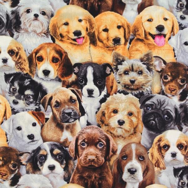 Patchworkstoff Hunde Hundewelpen Adorable Pets