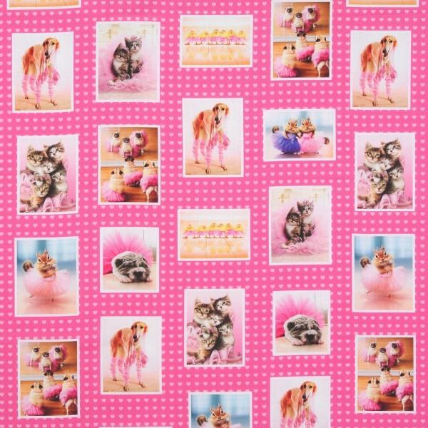 Patchworkstoff witzige Hunde, Katzen und Tiere in Tutus Panel