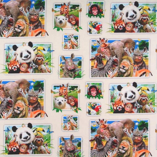 Zoo Selfies witzige wilde Tiere Bilder