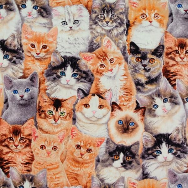 Patchworkstoff Katzen Katzenstoff Katzenkinder