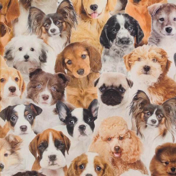 Dekostoff Hunde Hund Hundestoff Digitaldruck