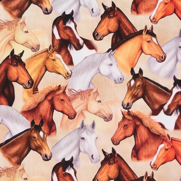 Baumwollstoff Pferde Pferdeköpfe Tiere Bauernhof beige