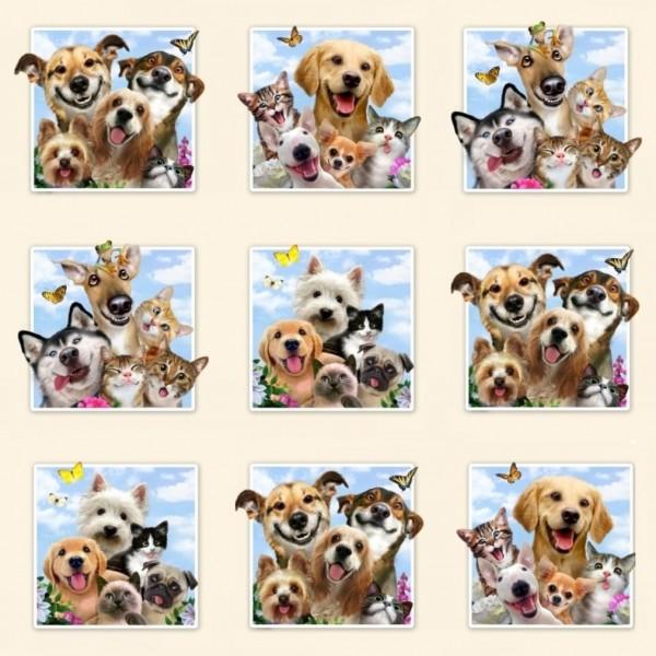 0,75 m Pet Selfies Tiere Haustiere Hunde Katzen Panel