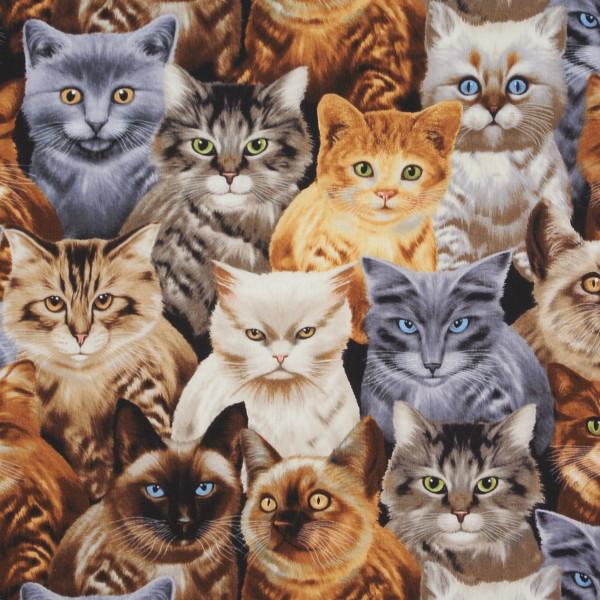 Patchworkstoff Timeless Katzen mit Charakter