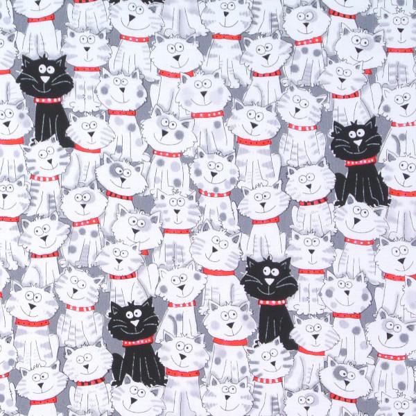 Timeless Mini Katzen schwarz-weiss •