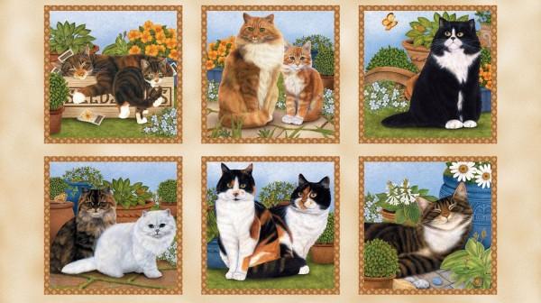 Katzen im Garten Feline Fine Panel