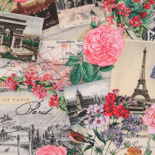 Spring in Paris nostalgische Stadtbilder