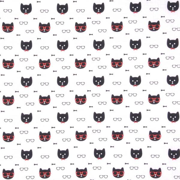 Witzige Katzen mit Brille und Fliege
