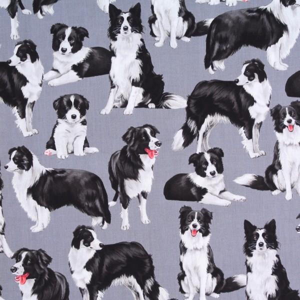 Patchworkstoff Bordercollie Hunde Hundestoff