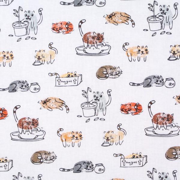 Witzige Katzen aus Daumenabdrücken
