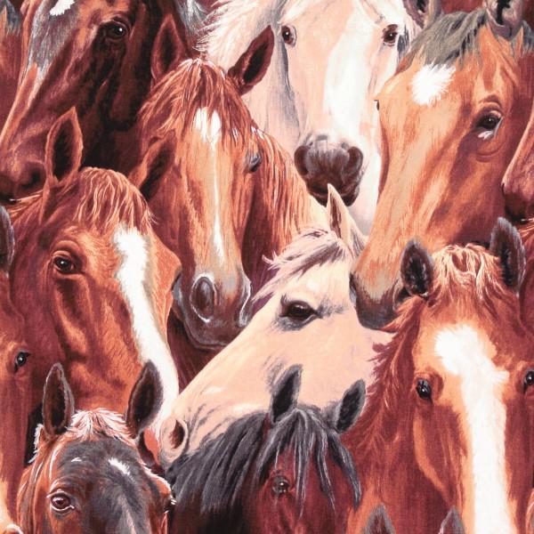 Running Free edle grosse Pferde