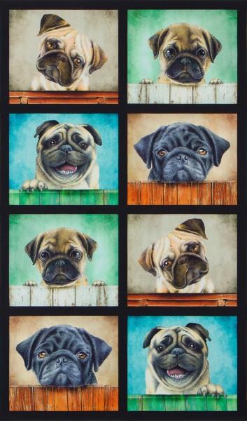 Patchworkstoff Hunde Whiskers Hundestoff Panel